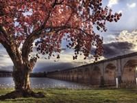 """Spring in Harrisburg by Lori Deiter - 16"""" x 12"""""""