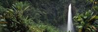 Akaka Falls State Park Hawaii USA