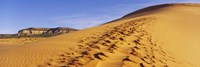 """Sand dunes in the desert, Coral Pink Sand Dunes State Park, Utah, USA by Panoramic Images - 27"""" x 9"""""""