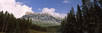 """Low angle view of a mountain, Protection Mountain, Bow Valley Parkway, Banff National Park, Alberta, Canada by Panoramic Images - 27"""" x 9"""""""