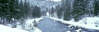 "USA, Montana, Gallatin River, winter by Panoramic Images - 27"" x 9"""