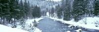 USA Montana Gallatin River Winter