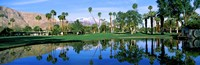 """Reflection of trees on water, Thunderbird Country Club, Rancho Mirage, Riverside County, California, USA by Panoramic Images - 27"""" x 9"""""""