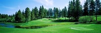 Golf course, Edgewood Tahoe Golf Course, Stateline, Douglas County, Nevada, USA Fine Art Print