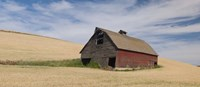 """Barn in a wheat field, Colfax, Whitman County, Washington State, USA by Panoramic Images - 27"""" x 9"""", FulcrumGallery.com brand"""