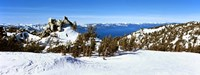"""Trees on a snow covered landscape, Heavenly Mountain Resort, Lake Tahoe, California-Nevada Border, USA by Panoramic Images - 27"""" x 9"""""""