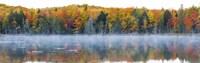 "Trees in autumn at Lake Hiawatha, Alger County, Upper Peninsula, Michigan, USA by Panoramic Images - 27"" x 9"""