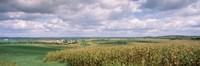 Corn and Alfalfa Fields, Wisconsin Fine Art Print