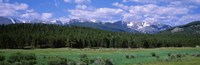 """Beaver Meadows Rocky Mountain National Park CO USA by Panoramic Images - 36"""" x 12"""""""