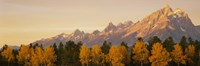 "36"" x 12"" Grand Tetons Pictures"