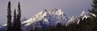 """Cathedral Group Mountains, Grand Teton National Park, Wyoming by Panoramic Images - 36"""" x 12"""""""