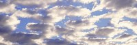 """Low angle view of clouds by Panoramic Images - 36"""" x 12"""""""