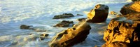 "Rock formations on the beach, La Jolla, California, USA by Panoramic Images - 36"" x 12"""
