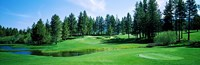"""Golf course, Edgewood Tahoe Golf Course, Stateline, Douglas County, Nevada, USA by Panoramic Images - 36"""" x 12"""""""