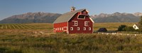 "Barn in a field with a Wallowa Mountains in the background, Enterprise, Wallowa County, Oregon, USA by Panoramic Images - 36"" x 12"""