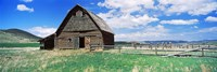 Old barn in a field, Colorado, USA by Panoramic Images - various sizes