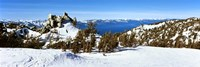 Trees on a snow covered landscape, Heavenly Mountain Resort, Lake Tahoe, California-Nevada Border, USA Fine Art Print