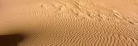 Great Sand Dunes National Park, Colorado, USA (close-up) Fine Art Print