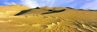 Sand dunes in a desert, Great Sand Dunes National Park, Colorado, USA Fine Art Print