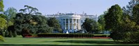 Lawn in front of a government building, White House, Washington DC, USA Fine Art Print