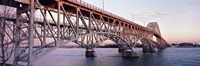 "Bridge across a river, South Grand Island Bridge, Niagara River, Grand Island, Erie County, New York State, USA by Panoramic Images - 27"" x 9"""