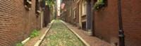 Street View of Beacon Hill, Boston Massachusetts Fine Art Print