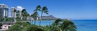 "Palm Trees On The Beach, Waikiki Beach, Honolulu, Oahu, Hawaii, USA by Panoramic Images - 27"" x 9"""