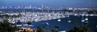 """Boats moored at a harbor, San Diego, California, USA by Panoramic Images - 27"""" x 9"""", FulcrumGallery.com brand"""