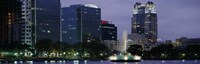 """Fountain in Lake Eola lit up at night, Summerlin Park, Orlando, Florida by Panoramic Images - 27"""" x 9"""", FulcrumGallery.com brand"""
