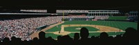 The Ballpark in Arlington Fine Art Print