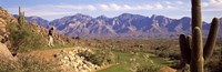 """Golf Course Tucson AZ by Panoramic Images - 27"""" x 9"""""""