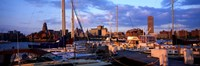 """Boats in Buffalo, New York by Panoramic Images - 27"""" x 9"""" - $28.99"""