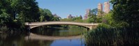 "Bridge across a lake, Central Park, New York City, New York State, USA by Panoramic Images - 27"" x 9"""