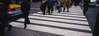 """Group of people crossing at a zebra crossing, New York City, New York State, USA by Panoramic Images - 27"""" x 9"""", FulcrumGallery.com brand"""