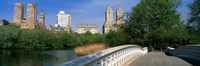 "Bow Bridge, Central Park, NYC, New York City, New York State, USA by Panoramic Images - 27"" x 9"""