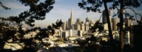 """View Of San Francisco, California by Panoramic Images - 27"""" x 9"""""""