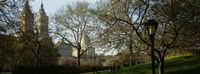 """Park In Front Of A Building, Central Park, NYC, New York City, New York State, USA by Panoramic Images - 27"""" x 9"""""""