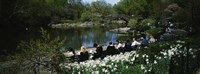 """Group of people sitting on benches near a pond, Central Park, Manhattan, New York City, New York State, USA by Panoramic Images - 27"""" x 9"""""""
