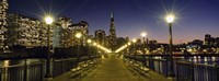 "Buildings lit up at night, Transamerica Pyramid, San Francisco, California, USA by Panoramic Images - 27"" x 9"""