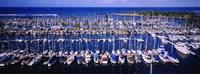 "High angle view of boats in a row, Ala Wai, Honolulu, Hawaii by Panoramic Images - 27"" x 9"""