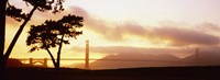 "Silhouette of trees at sunset, Golden Gate Bridge, San Francisco, California, USA by Panoramic Images - 27"" x 10"""