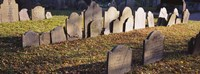 """Tombstones in a cemetery, Copp's Hill Burying Ground, Boston, Massachusetts by Panoramic Images - 27"""" x 9"""""""