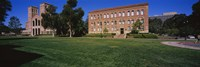 """Lawn in front of a Royce Hall and Haines Hall, University of California, City of Los Angeles, California, USA by Panoramic Images - 27"""" x 9"""" - $28.99"""