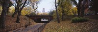 """Bridge in a park, Central Park, Manhattan, New York City, New York State, USA by Panoramic Images - 27"""" x 9"""""""