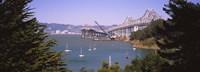 "Cranes at a bridge construction site, Bay Bridge, San Francisco, California by Panoramic Images - 27"" x 9"", FulcrumGallery.com brand"