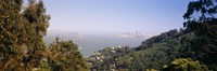 "Trees on a hill, Sausalito, San Francisco Bay, Marin County, California by Panoramic Images - 27"" x 9"" - $28.99"
