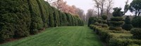 """Hedge in a formal garden, Ladew Topiary Gardens, Monkton, Baltimore County, Maryland by Panoramic Images - 27"""" x 9"""", FulcrumGallery.com brand"""