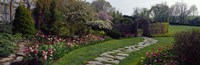 """Flowers in a garden, Ladew Topiary Gardens, Monkton, Baltimore County, Maryland, USA by Panoramic Images - 27"""" x 9"""", FulcrumGallery.com brand"""