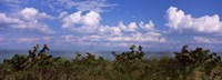 "Tampa Bay, Gulf Of Mexico, Anna Maria Island, Florida by Panoramic Images - 27"" x 9"""