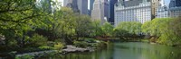 """Pond in a park, Central Park South, Central Park, Manhattan, New York City, New York State, USA by Panoramic Images - 27"""" x 9"""""""